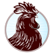 PageLines- Rooster-headshot80x80.png